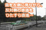 目黒駅より道順6